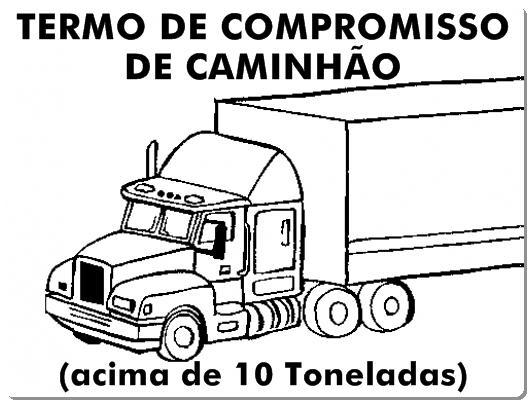 TCCAMINHAO10TON